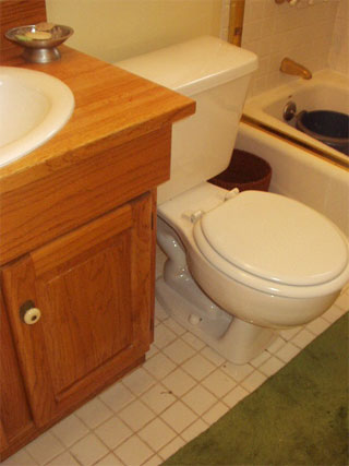 My toilet which just happens to sit right next to my sink!